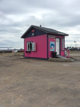 Pink Coffee Hut in Airway Heights 2017