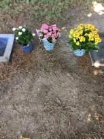 steve's grave site aug 2019